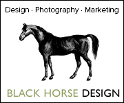 Black Horse Design (Herefordshire Horse)