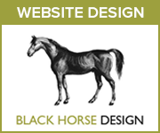 Black Horse Design Website Design (Herefordshire Horse)