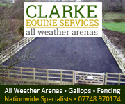 Clarke Equine Services  2018 (Herefordshire Horse)