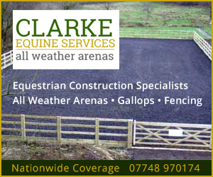 Clarke Equine Services 2020 (Herefordshire Horse)