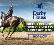 Derby House 2017 (Herefordshire Horse)