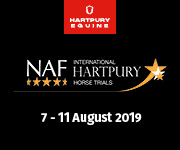 Hartpury 03 (Herefordshire Horse)