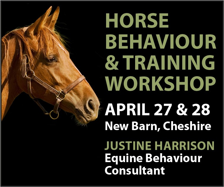 Justine Harrison Workshop April 2019 (Herefordshire Horse)