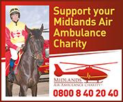 Midlands Air Ambulance (Herefordshire Horse)