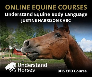 UH - Understand Equine Body Language (Herefordshire Horse)
